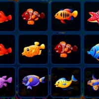 Fish Cards Match Online